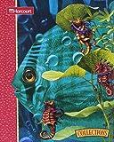 Hidden Surprises (Collections: A Harcourt Reading/Language Arts Program)