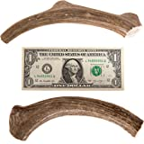 Antlers for Dogs 2 pack Large deer antler dog chews. 6-8 inches long, over 1 inch thick! Premium Brown shed antlers for dogs.