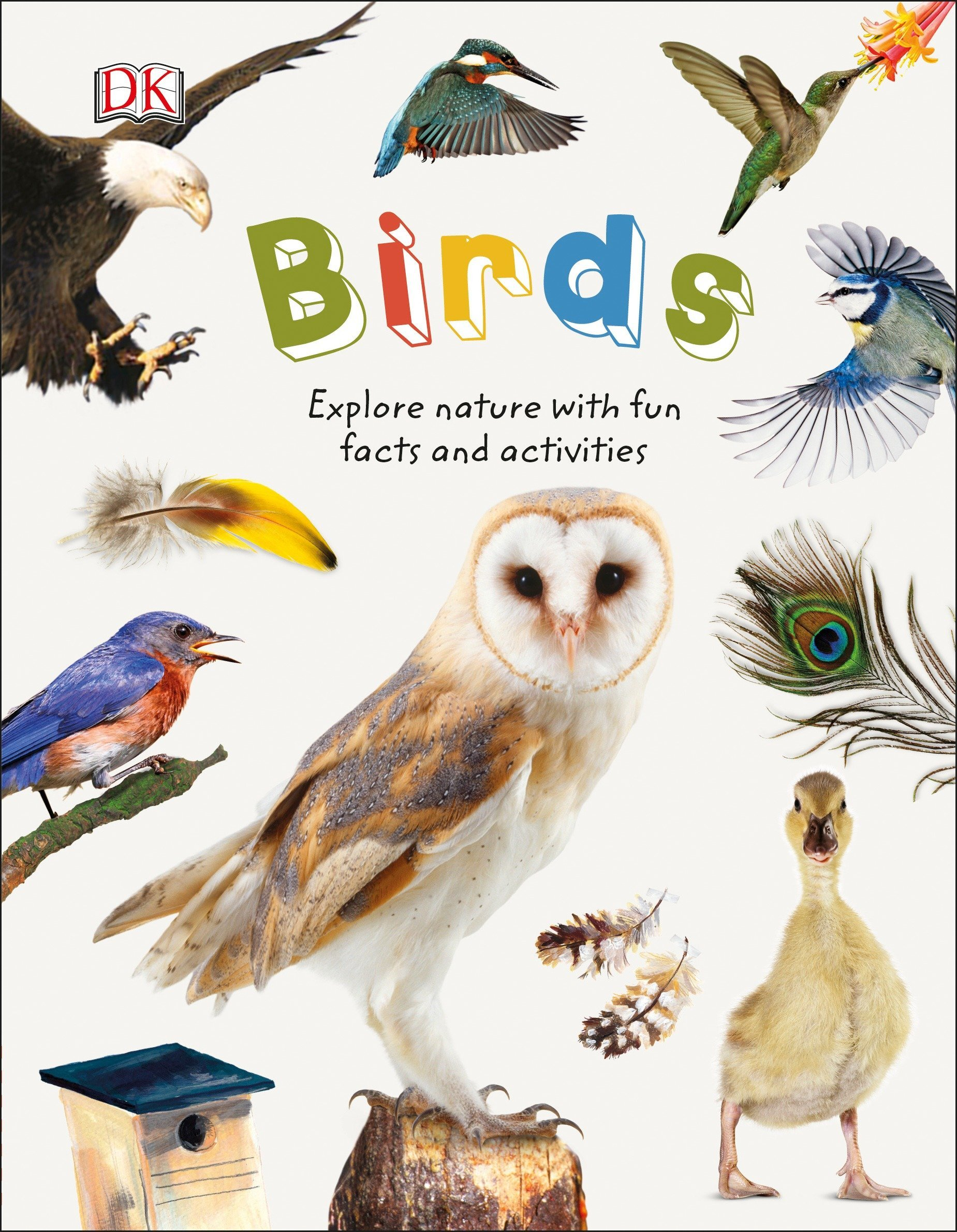Download Birds: Explore the world of our feathered friends (Nature Explorers) pdf epub