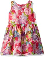 The Children's Place Girls' Sleeveless Dressy Dress