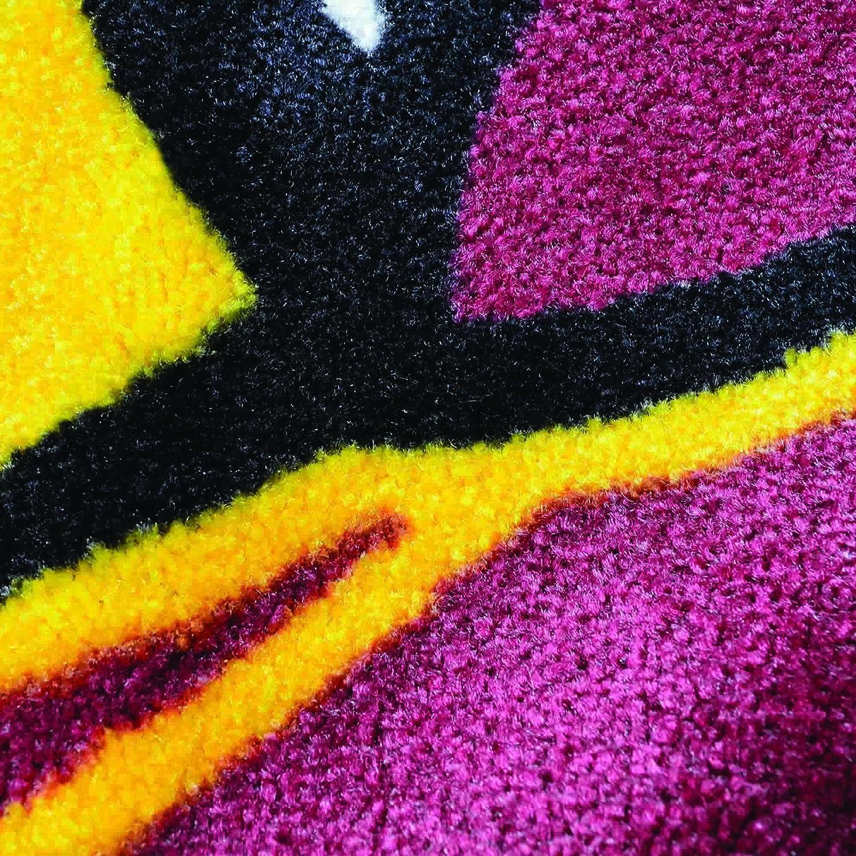 FANMATS NCAA North Carolina State University Wolfpack Nylon Face 4X6 Plush Rug