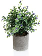 Decorative Small Artificial Potted Grass Pea Purple Flower Plants with Round Textured Vase