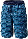 TSLA Men's 11 Inches Swimtrunks Quick Dry Water