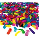 Fun Express Feather Assortment Model Kit (600 Piece)