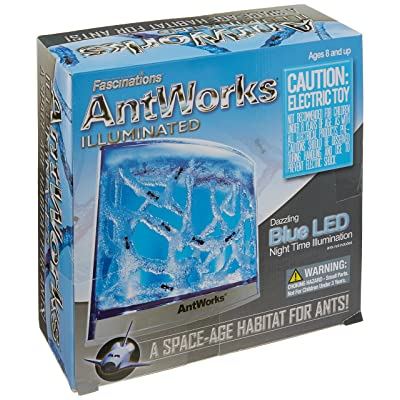 Fascinations AntWorks Illuminated Blue: Toys & Games [5Bkhe0307306]