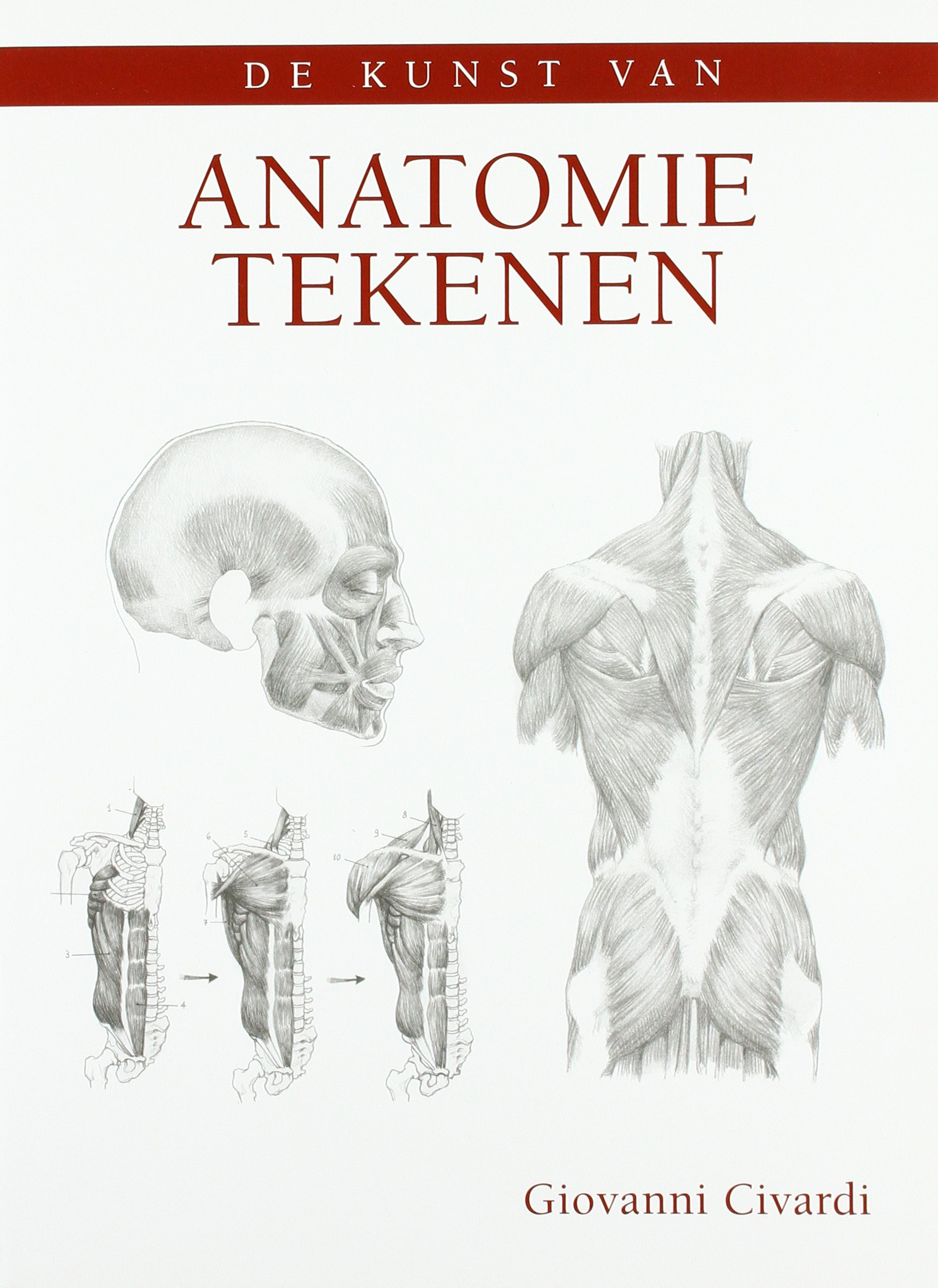 De kunst van anatomie tekenen: Amazon.es: Giovanni Civardi ...