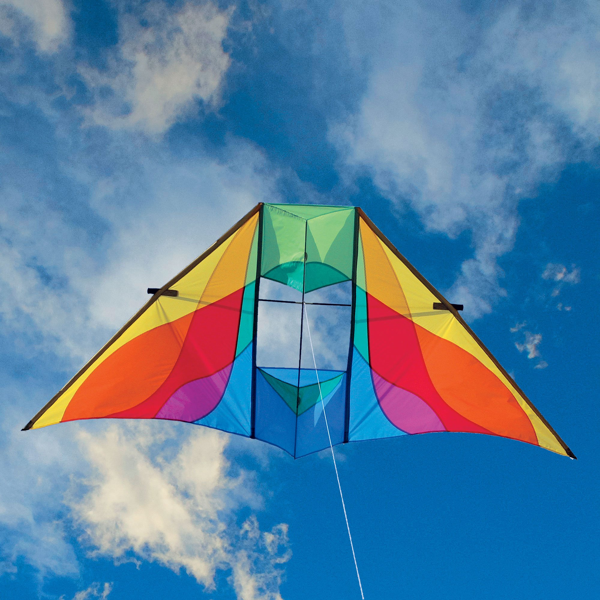 Into The Wind Rocky Mountain Delta Conyne Kite Rainbow