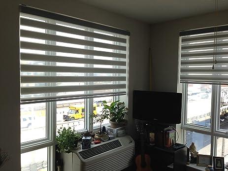 Amazoncom Zebra Roller Blind Light Filtering Sheer Shade