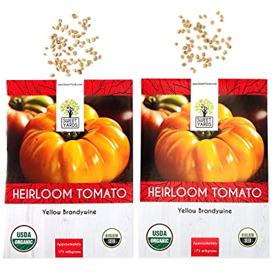 Organic Yellow Brandywine Tomato Seeds - 2 Seed Packets! - Over 100 Heirloom Non-GMO USDA Organic Seeds : Garden & Outdoor