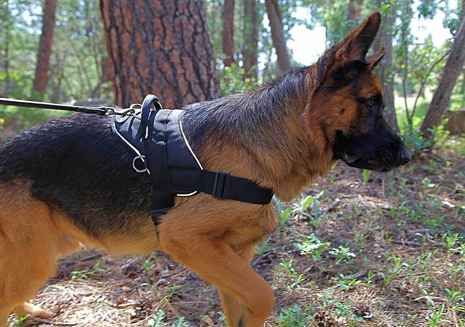 Dean /& Tyler Dog Harness Black with Reflective Trim Large Fits Girth Size: 32-Inch to 42-Inch