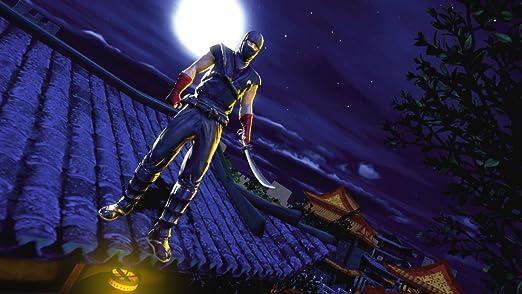 Amazon.com: Samurai Ninja Assassin Hero : Evil Ninja Killer ...