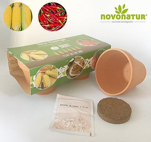 Kit cultivo, kit huerto urbano niños de 2 mini macetas de Pimiento ...