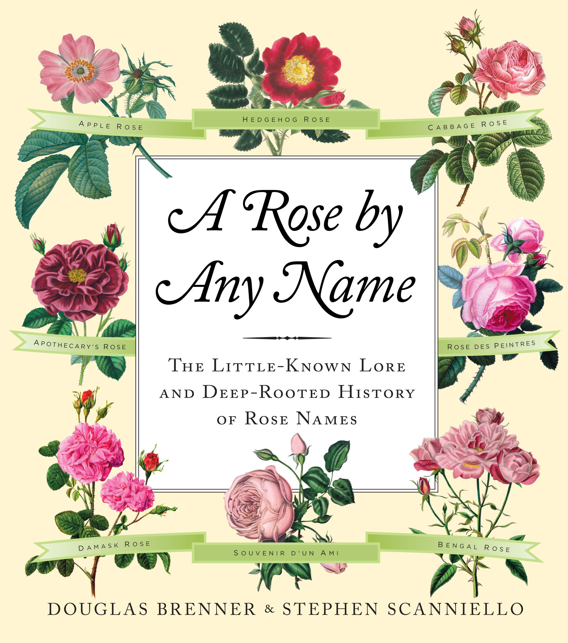 Download A Rose by Any Name: The Little-Known Lore and Deep-Rooted History of Rose Names ebook