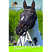 The Paint Horse (White Cloud Station )