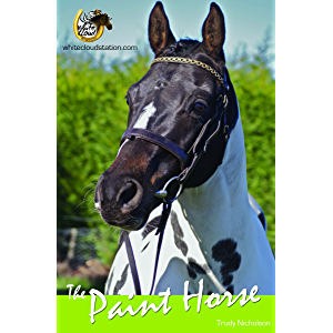 The Paint Horse (White Cloud Station)