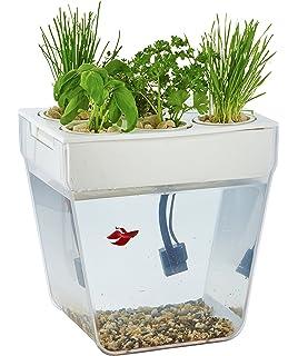 Amazoncom Springworks Microfarm Aquaponic Garden Pet Supplies