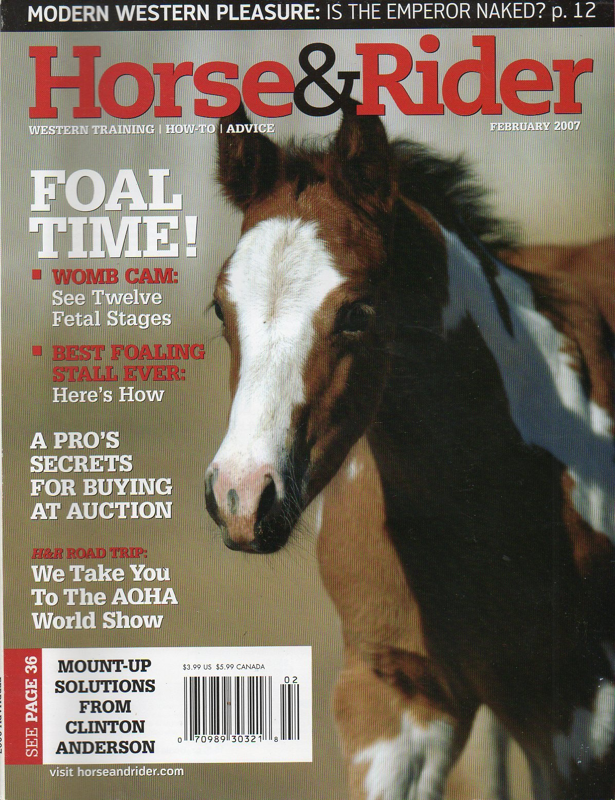 Horse & Rider Magazine February 2007 WOMB CAM: SEE TWELVE FETAL STAGES Foal Time BEST FOALING STALL EVER A Pro's Secrets For Buying At Auction ebook