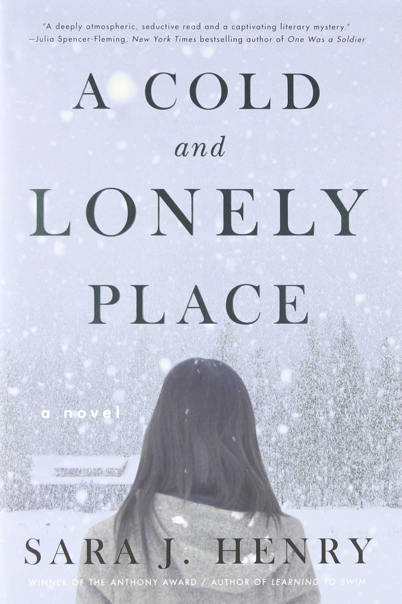 Read Online A Cold and Lonely Place: A Novel pdf
