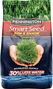 Pennington Smart Seed Sun and Shade Grass Seed, 20 LBS