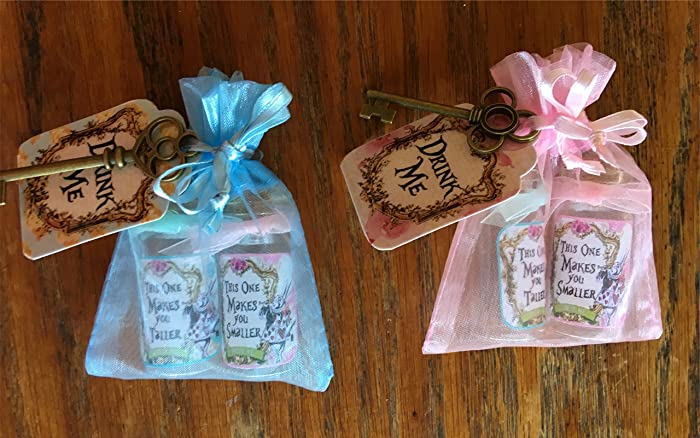 Amazon.com: Alice in Wonderland 6 party favors with tiny bottles ...