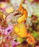 フシギなさかな―ヒメタツのひみつ