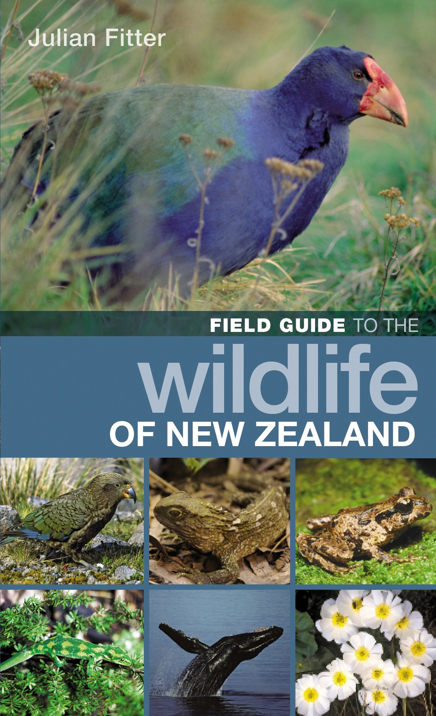 Field Guide to the Wildlife of New Zealand (Field Guides)