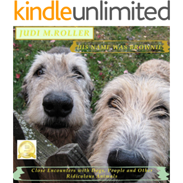 His Name Was Brownie Close Encounters With Dogs People And Other Ridiculous Animals Kindle Edition By Roller Judi M Crafts Hobbies Home Kindle Ebooks Amazon Com