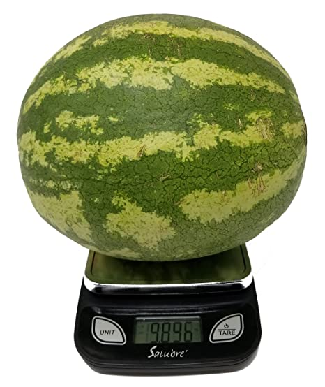 Digital Food Scale Kitchen Scale Postal Scale Weigh In Pounds Ounces Grams Precise Weight Scale 1g 0 01oz To 11 Lbs Batteries Included