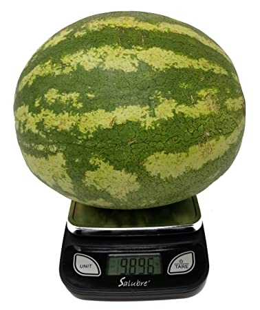 amazon com digital food scale kitchen scale postal scale weigh in
