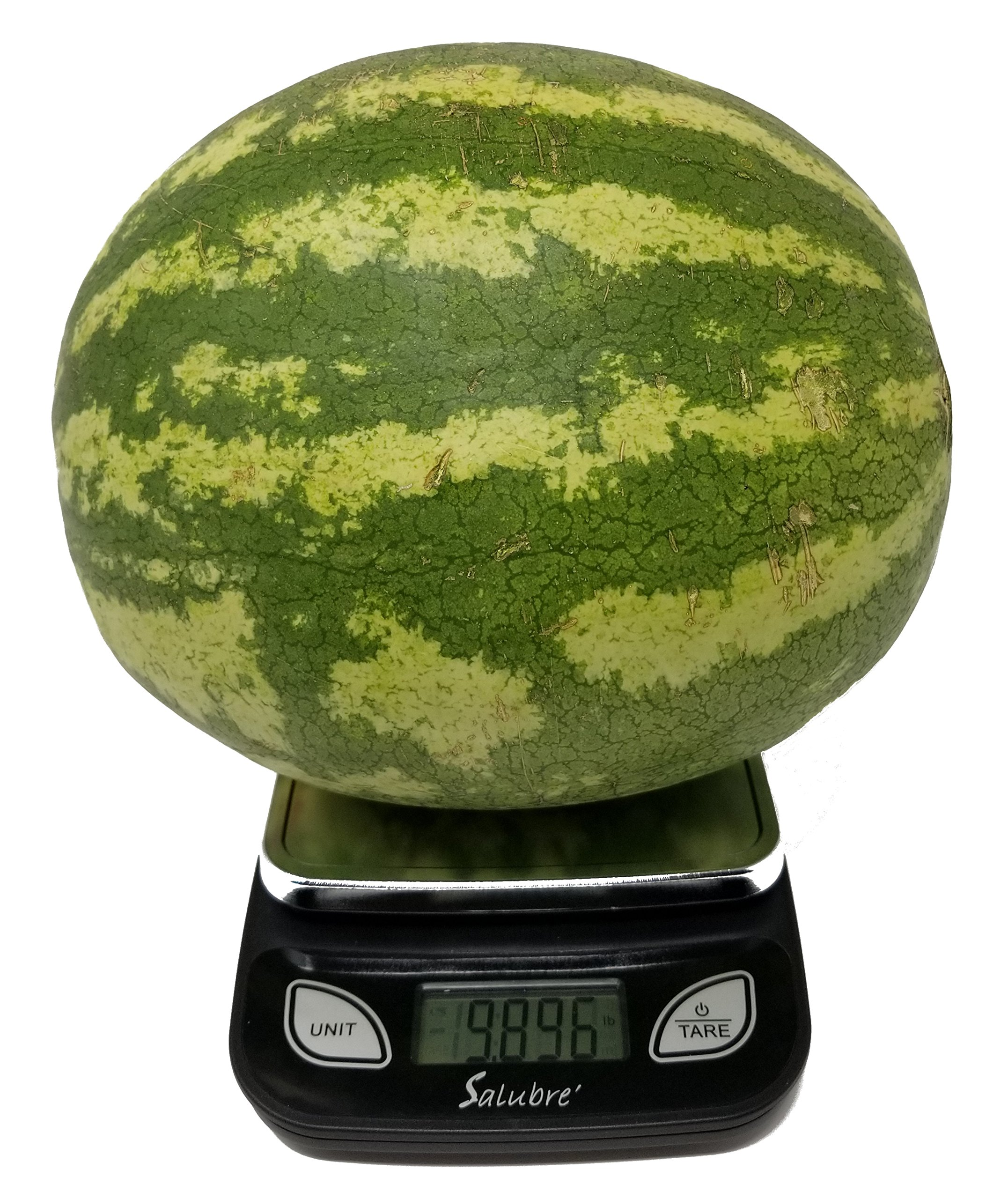 Digital Food Scale/Kitchen Scale/Postal Scale – Weigh in Pounds, Ounces, Grams - Precise Weight Scale 1g (0.04oz) to 11 lbs - Batteries Included