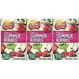 Golden Circle Summer Berries Fruit Drink, 24 x 250ml