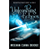 Unleashing Echoes (Reconstructionist Book 3)