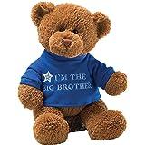 Gund I'm The Big Brother 毛绒熊玩具