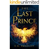The Last Prince: A Celtic Fae Inspired Fantasy Novel (The Coming of Áed Book 2)
