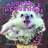 Adorable Hedgehogs Mini 2019: 16-Month Calendar - September 2018 through December 2019 (Calendars 2019)