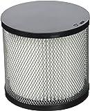Greenstar 1230 Filtre pour aspirateur vide cendre XL2040B