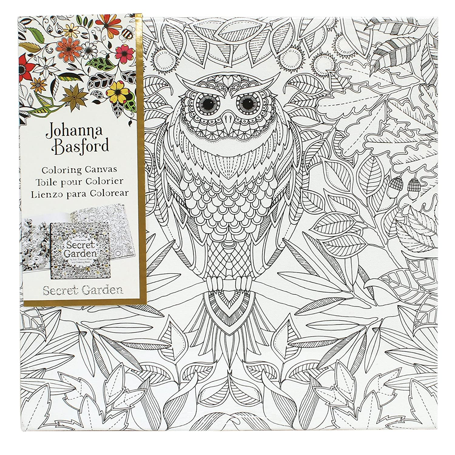 Amazon.com: Art Alternatives Johanna Basford Secret Garden Coloring ...