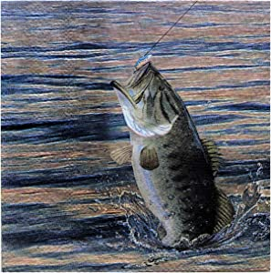 Fishing Beverage or Cocktail Napkins Gone Fishin' Party Collection (16 pack) by Havercamp