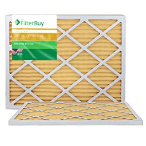 FilterBuy 14x30x1 MERV 11 Pleated AC Furnace Air Filter, (Pack of 2 Filters), 14x30x1 – Gold