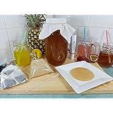 2lt Kombucha Home Brew Kit, Organic Scoby, Strong Starter Tea & Instructions