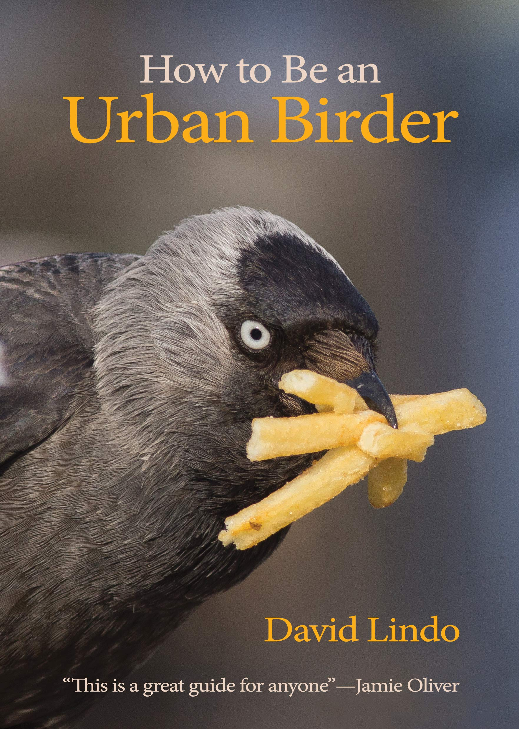How to Be a Birdwatcher photo