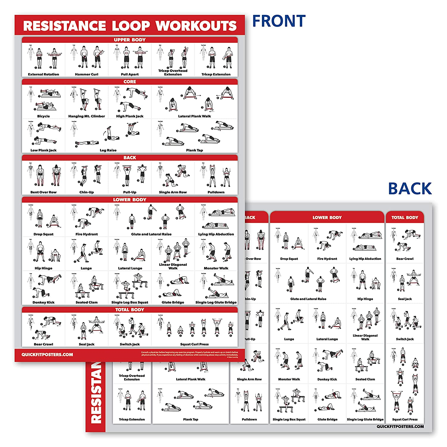 QuickFit Resistance Loop Bands Workout Poster 18 x 27 Laminated Exercise Chart for Resistance Band Loops