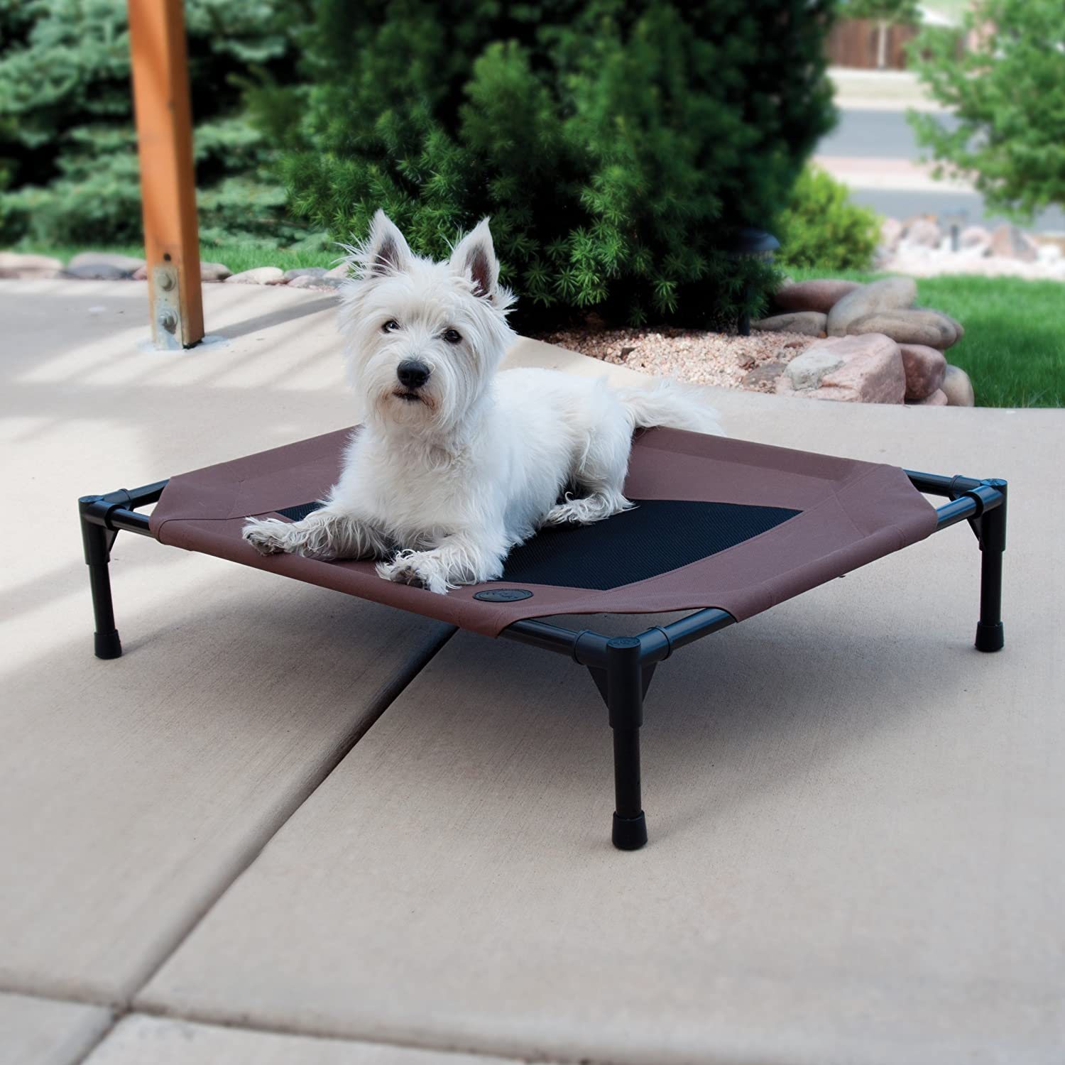 Top 10 Dog Beds And Furniture Products: Ease Of Use, Comfort & Convenience 12