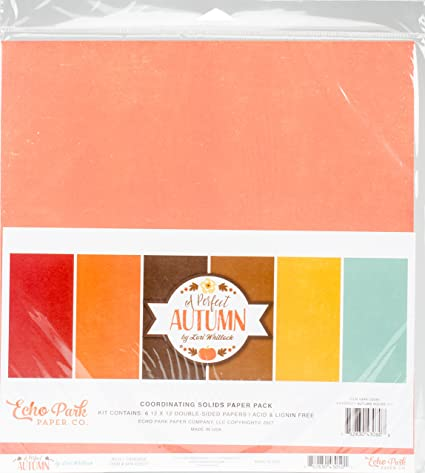 Amazon com: Echo Park Paper Company APA132060 A Perfect
