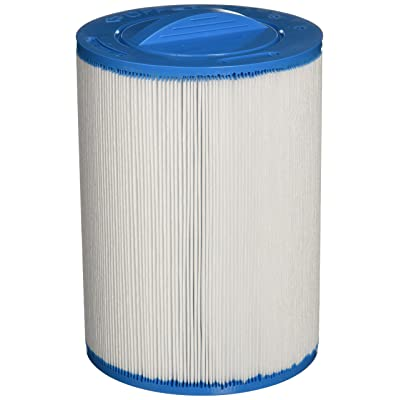 Filbur FC-0359 Antimicrobial Replacement Filter Cartridge for Select Pool and Spa Filter : Swimming Pool Cartridge Filter Inserts : Garden & Outdoor