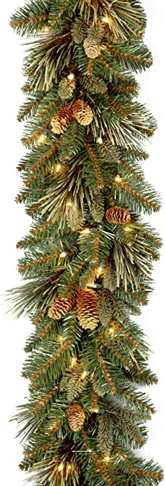 """National Tree 9 Foot by 10 Inch Carolina Pine Garland with Flocked Cones and 100 Battery Operated LED Lights (CAP3-306-9A-B1), 9' x 10"""""""
