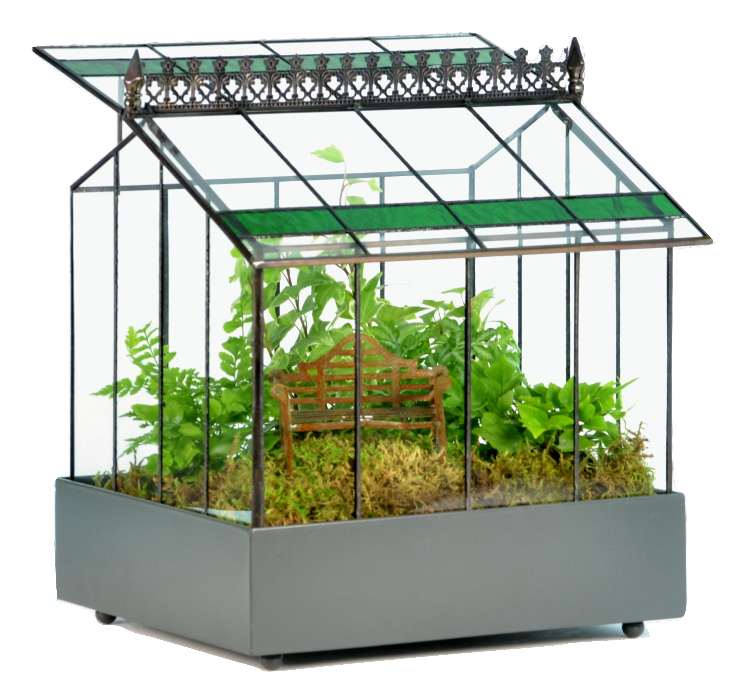 H Potter Glass Terrarium Case Planter – Wardian Container with Green Glass Accent for Succulents, Plants, Flowers, Orchids, Foliage & More