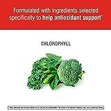 Swisse Ultiboost Chlorophyll Liquid