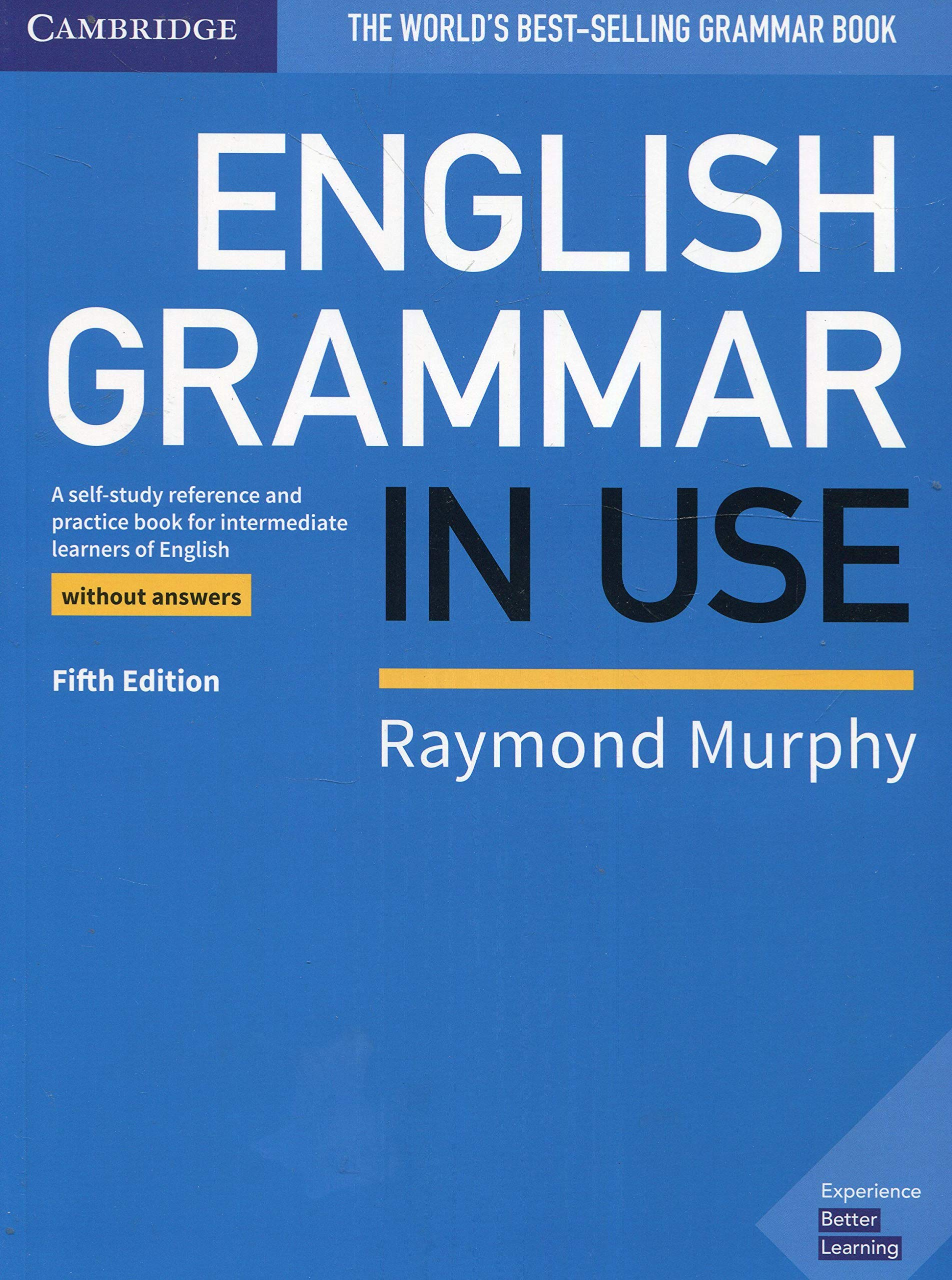 English Grammar in Use Book without Answers: A Self-study ...