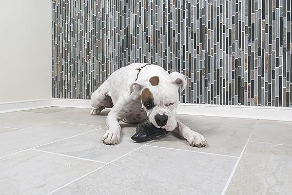 PetSafe Juguete para Perro: CE Juguete EST Ideal para los ...